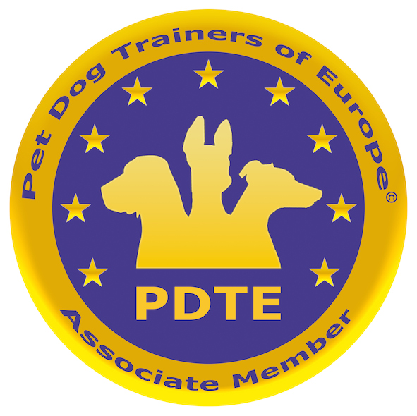 Image result for pdte logo